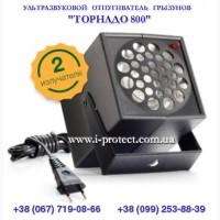 Захист ультразвуком, прогнати гризунів з приміщення