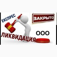 Экспресс-ликвидация ООО (альтернативная ликвидация)