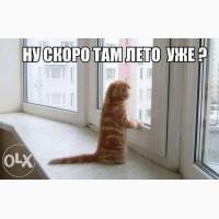Срочный ремонт окон, дверей, ролет Киев, Харьковский, Позняки, Осокорки, без выходных